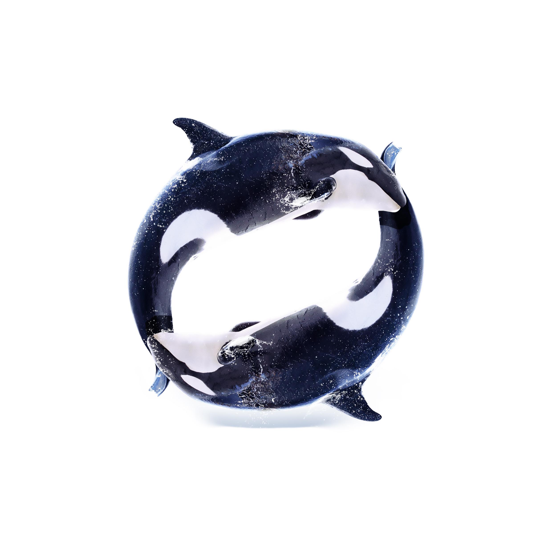 O_Orca