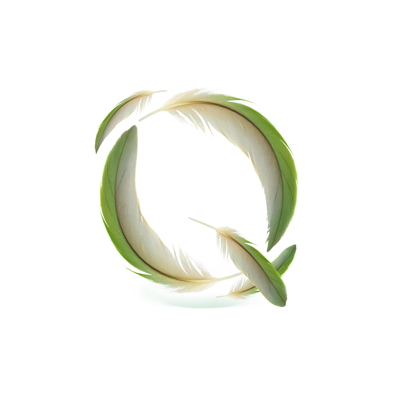 Q_Quilll